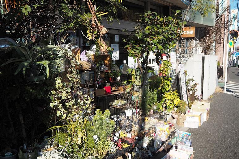 緑の本棚(弥生坂)入り口