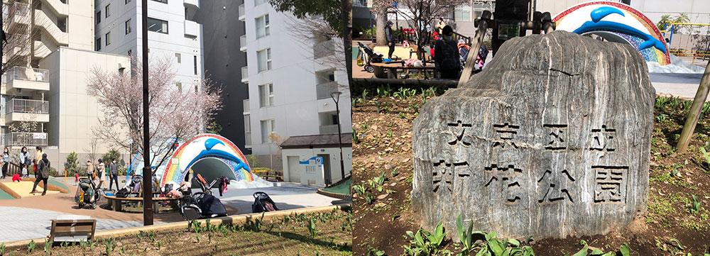 湯島小学校前の文京区立新花公園
